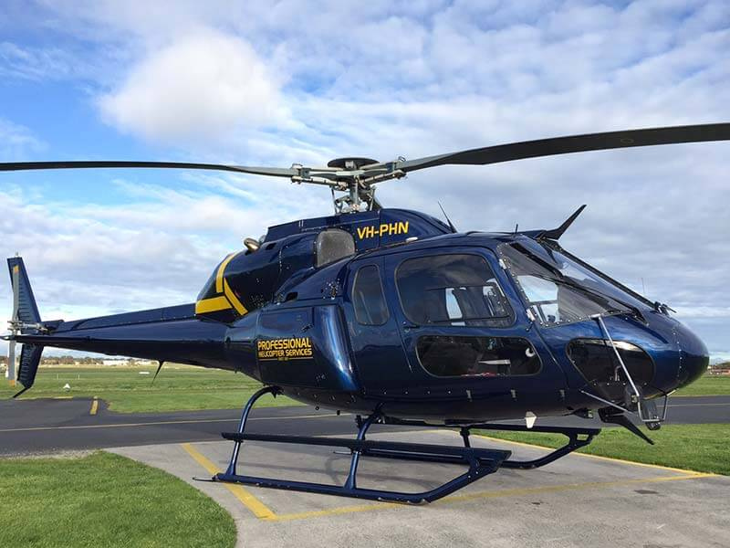 AS355 F2 Twin-Squirrel   AS355F2 Professional Helicopter Services